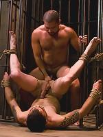 Hard Discipline